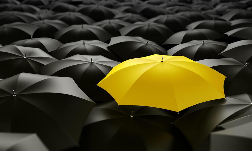 Como proteger minha empresa de fraude
